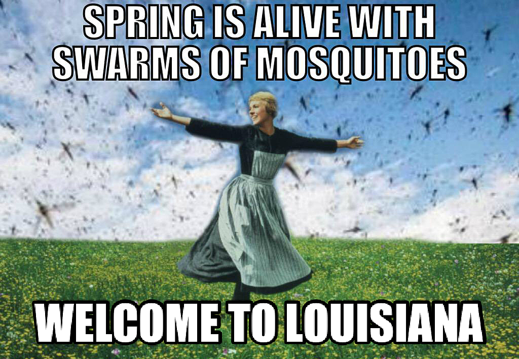 IMG_1019?w=630&h=435&zc=1&s=0&a=t&q=89 11 memes only people from louisiana will understand